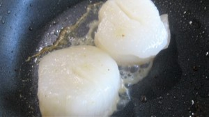 coquilles in pan